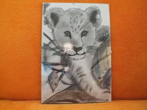 tygří mládě - dárek pro manžílka k 30. narozeninám