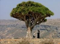 Somálsko
