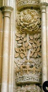 ruze-tudorovci-kralovska-univerzita-cambridge